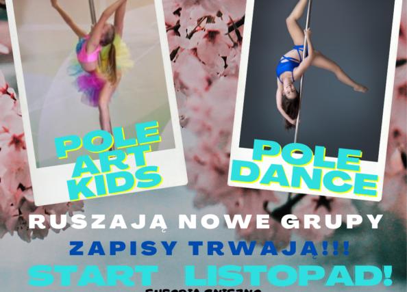 W listopadzie startują nowe grupy POLE ART KIDS oraz POLE DANCE, zapisy trwają!